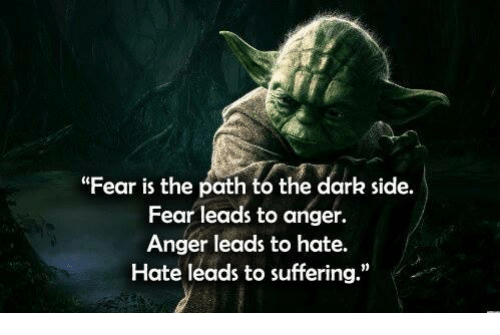 """From Star Wars Empire Strikes Back, Yoda: Fear is the path to the dark side. Fear leads to anger. Anger leads to hate. Hate leads to suffering."""