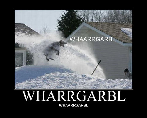 """A dog jumping over a snowbank into the air to take a face full of snow coming from a snow plow. Captioned wharrgarbl on the picture, underneath the picture, and underneath the caption."""